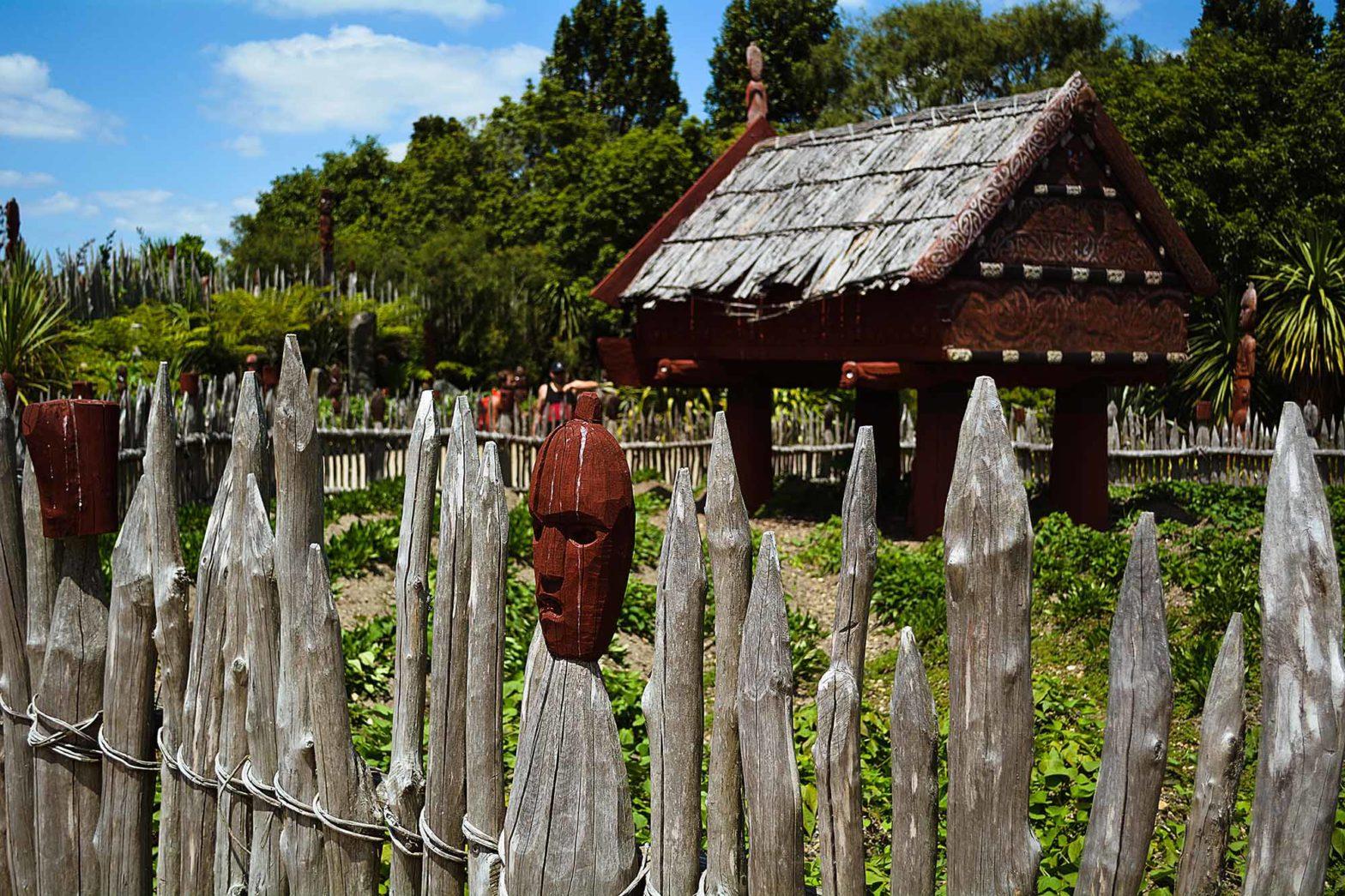 5 must do things in Rotorua